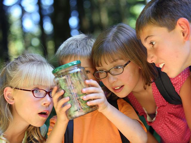 children holding up and looking at insects in a jar with grass