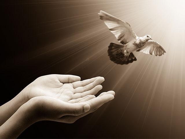 flying-bird-hands_si.jpg