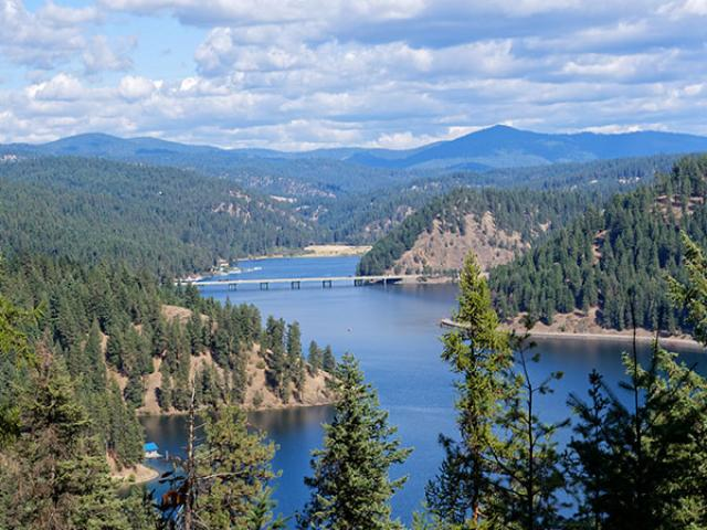 Idaho Forest and river