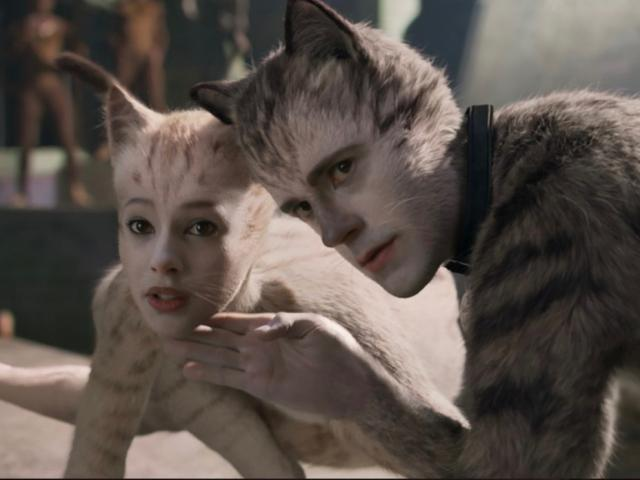 Cats movie two cats