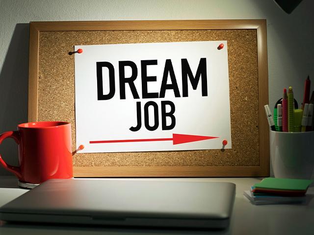 dream_job_si.jpg