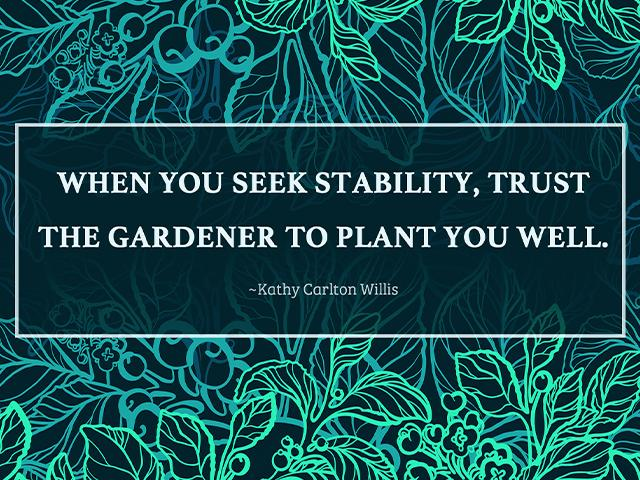 When you seek stability, trust the gardener to plant you well. ~Kathy Carlton Willis