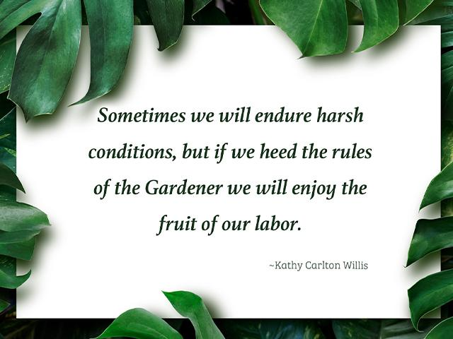 Sometimes we will endure harsh conditions, but we will enjoy the fruit of our labor.