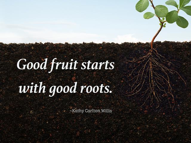 Good fruit starts with good roots. ~Kathy Carlton Willis