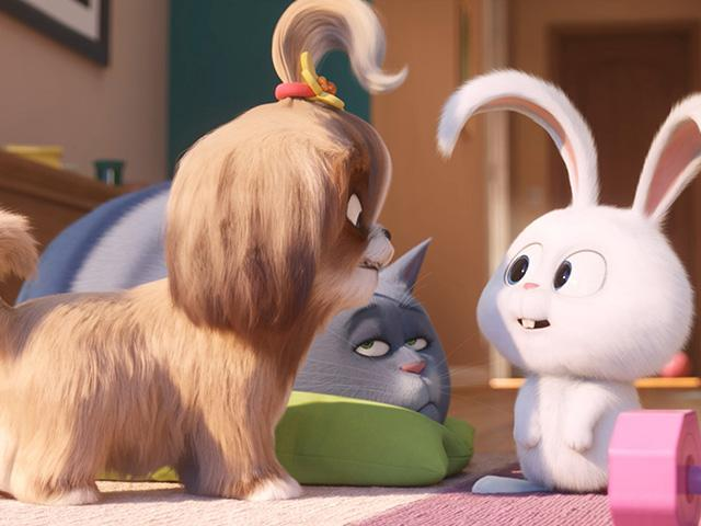 The Secret Life of Pets 2 movie
