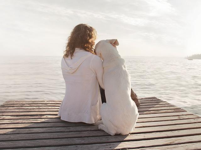 woman and large white dog sitting on pier